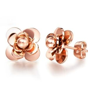 Rose gold stainless steel stud earrings.